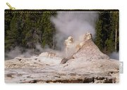Grotto Geyser Eruption Two Carry-all Pouch