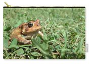 Grumpy Toad Carry-all Pouch