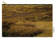 Guanella Pass Autumn Day I Carry-all Pouch