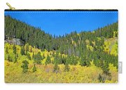 Guanella Pass Study 1 Carry-all Pouch