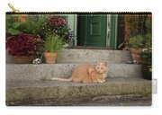 Guarding The Door Carry-all Pouch