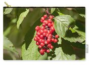 Guelder Rose Viburnum Opulus In Fruit Carry-all Pouch