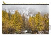 Guisane Valley In Autumn - French Alps Carry-all Pouch