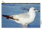 Gull - Beach -reflection Carry-all Pouch