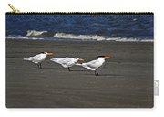 Gulls On Beach Carry-all Pouch