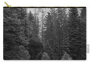 Half Dome In Monochrome Carry-all Pouch