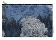 Half Dome In Winter Carry-all Pouch
