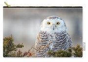 Hampton Beach Nh Snowy Owl Carry-all Pouch
