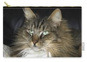 Handsome Cat Carry-all Pouch