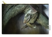 Hanging Big Eared Bat Carry-all Pouch