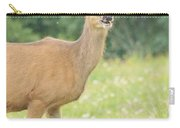 Happy Deer Carry-all Pouch