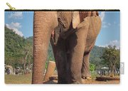 Happy Thai Elephant In Chiang Mai Carry-all Pouch