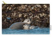 Harbor Seal And Pup Carry-all Pouch