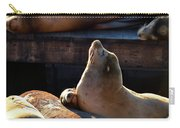 Harbor Seal In The Sun Carry-all Pouch