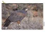 Harris Hawk At Rest Carry-all Pouch