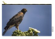Harris Hawk Atop A Saguaro  Carry-all Pouch