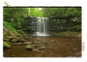 Harrison Wrights Falls In The Forest Carry-all Pouch