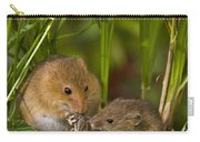 Harvest Mice Eating Grasshopper Carry-all Pouch