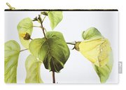 Hau Plant Art Carry-all Pouch