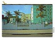 Havana-48 Carry-all Pouch