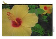 Hawaiian Sunrise Carry-all Pouch