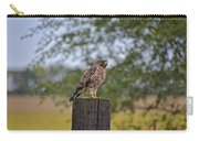 Hawk On A Fence Post Carry-all Pouch