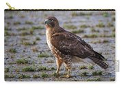 Hawk On A Walk Carry-all Pouch