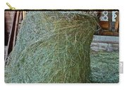 Hay Is For Horses Carry-all Pouch