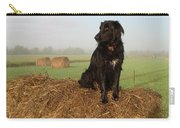 Hay There Black Dog Carry-all Pouch