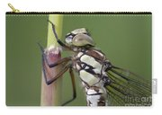 Head Of The Dragonfly Carry-all Pouch