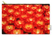 Healing Lights 2 Carry-all Pouch