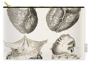 Heart, Anatomical Illustration, 1814 Carry-all Pouch