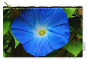 Heavenly Blue Carry-all Pouch