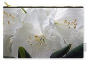 Heavenly Glimpse Carry-all Pouch
