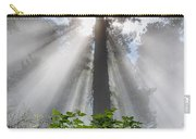 Heaven's Light Carry-all Pouch