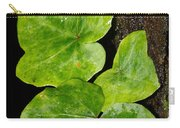Hedera Carry-all Pouch
