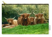 Heilan Coo Carry-all Pouch