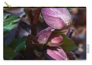 Heliborus Early Flower Buds 1 Carry-all Pouch