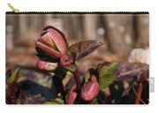 Heliborus Early Flower Buds 2 Carry-all Pouch