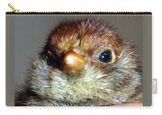 Hello Chick Carry-all Pouch