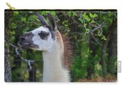 Hello Llama Carry-all Pouch