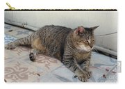 Hemingway Polydactyl Cat Carry-all Pouch