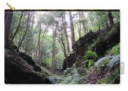 Hemlock Gorge Carry-all Pouch