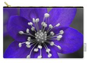 Hepatica 3 Carry-all Pouch