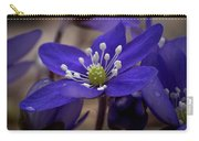 Hepatica 4  Carry-all Pouch