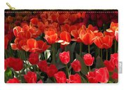 Heralds Of Spring Carry-all Pouch