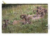 Herd Of Bighorn Sheep Carry-all Pouch
