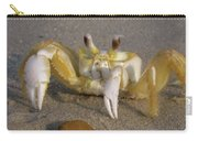 Hermit Crab Carry-all Pouch