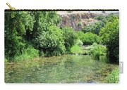 Hermon Stream Nature Reserve Carry-all Pouch