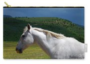 Hero's Horse-colorful Background Carry-all Pouch
